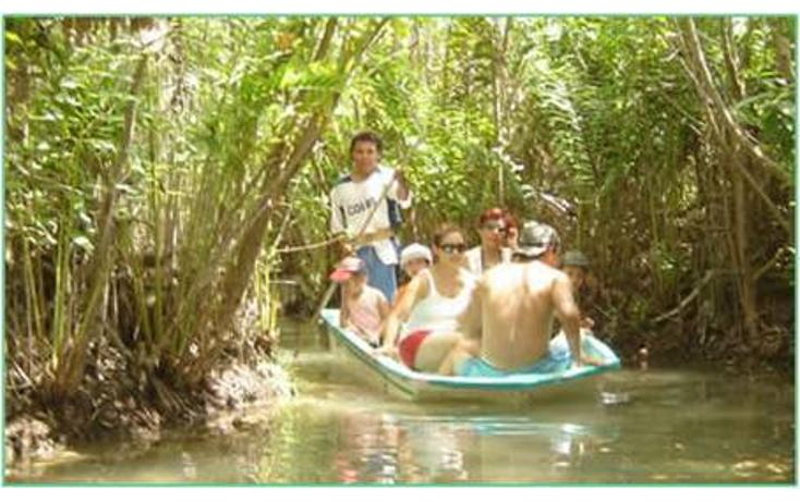 Foto de terreno habitacional en venta en  , san crisanto, sinanché, yucatán, 769931 No. 08