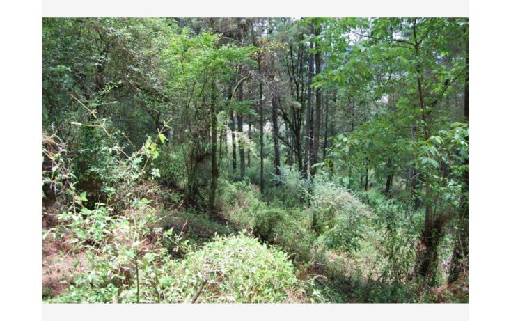 Foto de terreno habitacional en venta en san cristóbal  camino real, maya, san cristóbal de las casas, chiapas, 380271 no 05