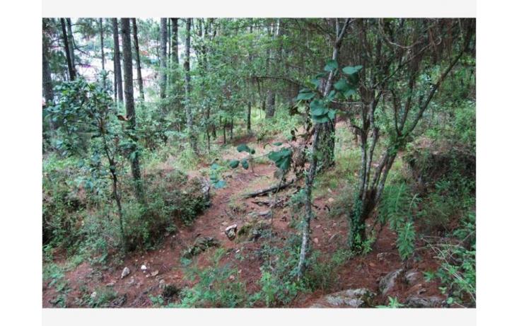 Foto de terreno habitacional en venta en san cristóbal  camino real, maya, san cristóbal de las casas, chiapas, 380271 no 09