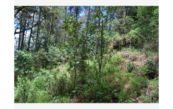 Foto de terreno habitacional en venta en san cristóbal  camino real, maya, san cristóbal de las casas, chiapas, 380271 no 11