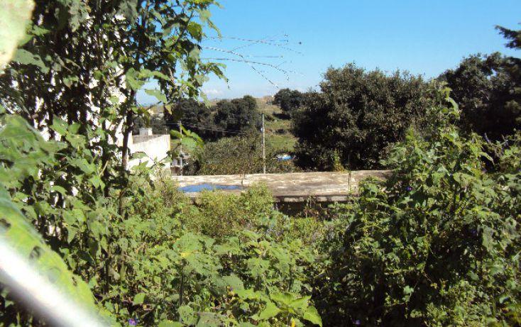 Foto de terreno habitacional en venta en, san cristóbal caleras tulcingo, puebla, puebla, 1281387 no 05