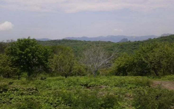 Foto de terreno comercial en venta en, san cristóbal de la barranca, san cristóbal de la barranca, jalisco, 1554652 no 03