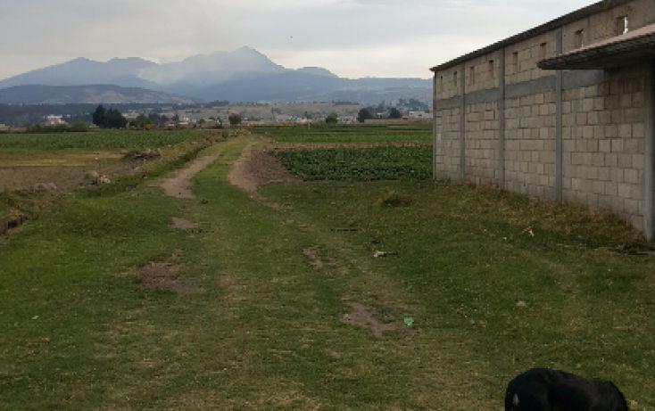 Foto de terreno habitacional en venta en, san cristóbal tecolit, zinacantepec, estado de méxico, 1780808 no 06