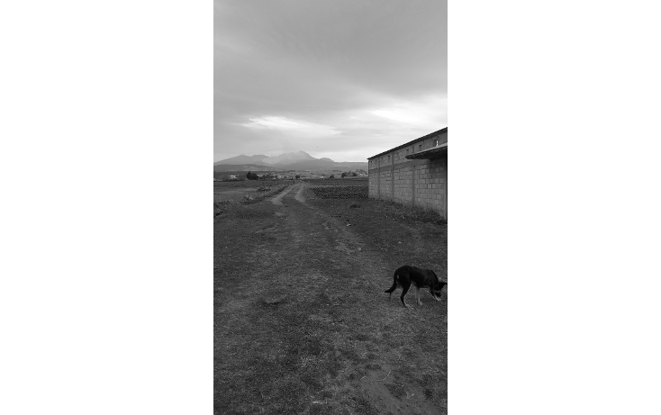 Foto de terreno habitacional en venta en  , san cristóbal tecolit, zinacantepec, méxico, 1780808 No. 06