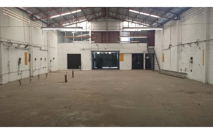 Foto de nave industrial en venta en  , san damián, mérida, yucatán, 1181563 No. 02