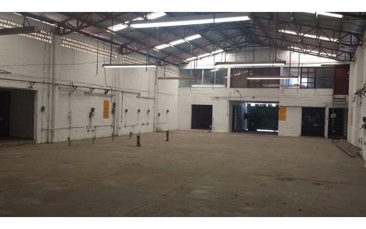 Foto de nave industrial en venta en  , san damián, mérida, yucatán, 1181563 No. 03