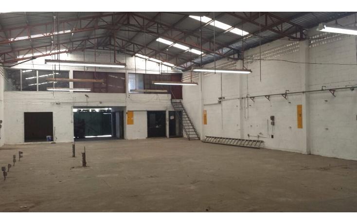 Foto de nave industrial en venta en  , san damián, mérida, yucatán, 1181563 No. 06