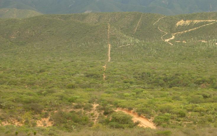 Foto de terreno comercial en venta en  , san diego chalma, tehuacán, puebla, 1229857 No. 04