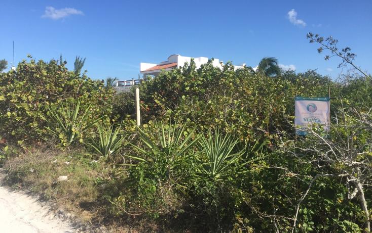 Foto de terreno habitacional en venta en  , san diego, dzemul, yucatán, 1474537 No. 03