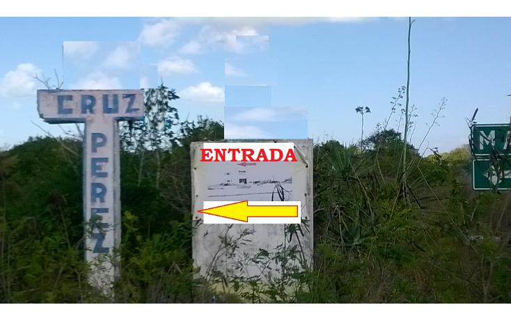 Foto de terreno habitacional en venta en  , san diego, dzemul, yucatán, 1474537 No. 04