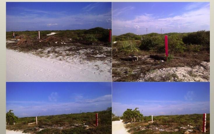 Foto de terreno habitacional en venta en  , san diego, dzemul, yucat?n, 1489493 No. 02