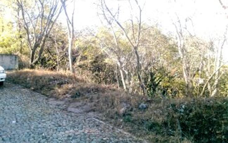 Foto de terreno habitacional en venta en  , san diego, ixtapan de la sal, méxico, 1065303 No. 04