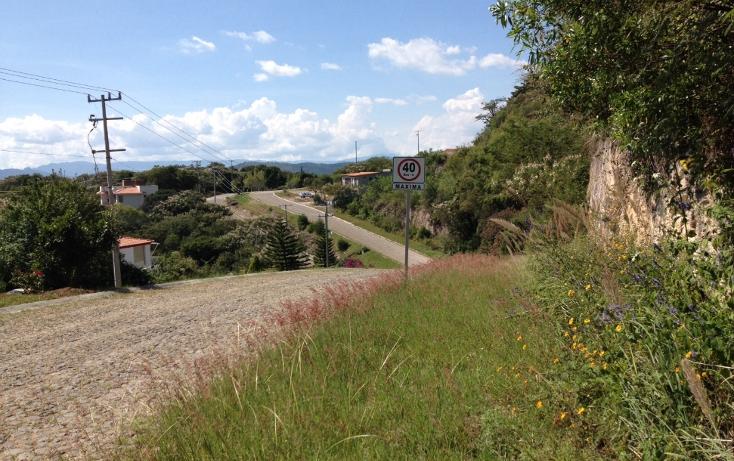Foto de terreno habitacional en venta en  , san diego, ixtapan de la sal, méxico, 1317265 No. 08