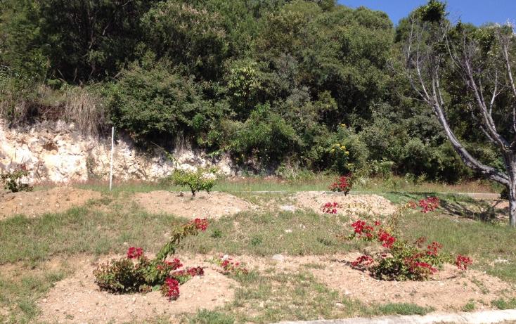 Foto de terreno habitacional en venta en  , san diego, ixtapan de la sal, méxico, 1318089 No. 02