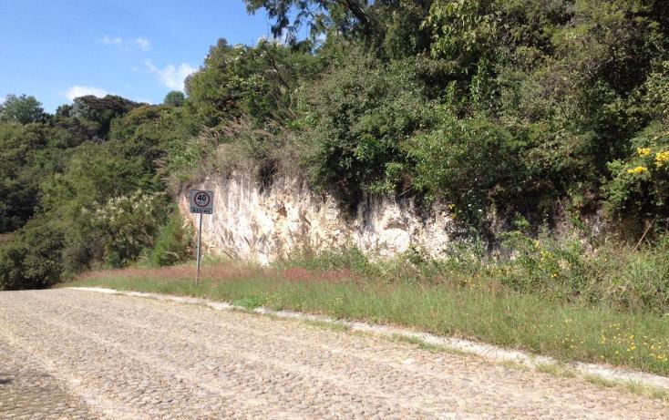 Foto de terreno habitacional en venta en  , san diego, ixtapan de la sal, méxico, 1318089 No. 04