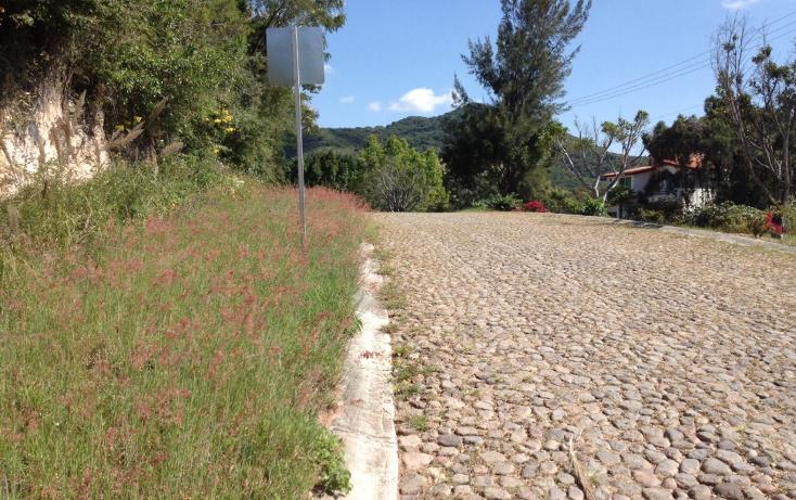 Foto de terreno habitacional en venta en  , san diego, ixtapan de la sal, méxico, 1318089 No. 06