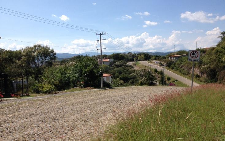 Foto de terreno habitacional en venta en  , san diego, ixtapan de la sal, méxico, 1318089 No. 07