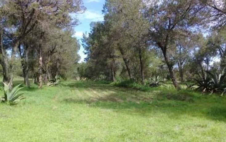 Foto de terreno habitacional en venta en  , san dionisio yauhquemehcan, yauhquemehcan, tlaxcala, 3426133 No. 15
