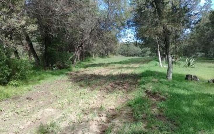 Foto de terreno habitacional en venta en  , san dionisio yauhquemehcan, yauhquemehcan, tlaxcala, 3426133 No. 18
