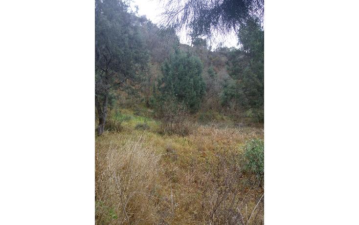 Foto de terreno habitacional en venta en  , san esteban tizatlan, tlaxcala, tlaxcala, 1660698 No. 03