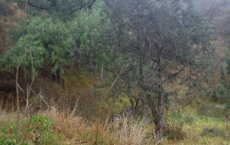 Foto de terreno habitacional en venta en, san esteban tizatlan, tlaxcala, tlaxcala, 1660698 no 04