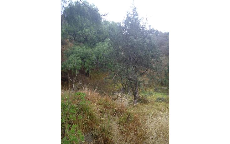 Foto de terreno habitacional en venta en  , san esteban tizatlan, tlaxcala, tlaxcala, 1660698 No. 04