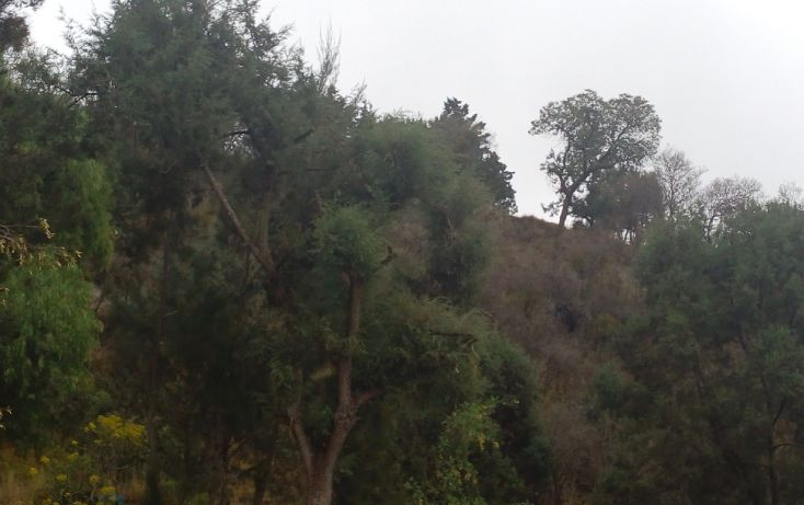 Foto de terreno habitacional en venta en, san esteban tizatlan, tlaxcala, tlaxcala, 1660698 no 06