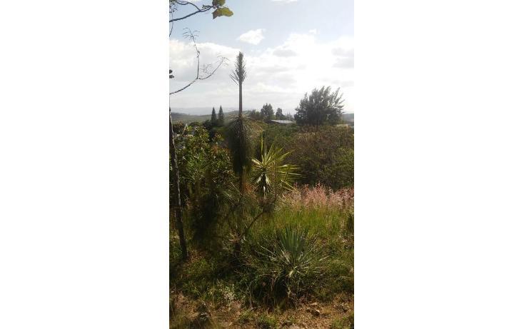 Foto de terreno habitacional en venta en  , san felipe del agua 1, oaxaca de juárez, oaxaca, 1009259 No. 03