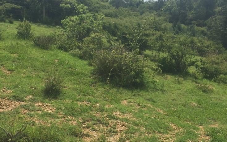 Foto de terreno habitacional en venta en  , san felipe del agua 1, oaxaca de juárez, oaxaca, 1009259 No. 04