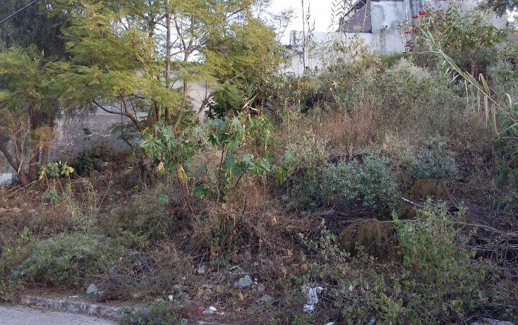 Foto de terreno habitacional en venta en, san felipe del agua 1, oaxaca de juárez, oaxaca, 1285331 no 02