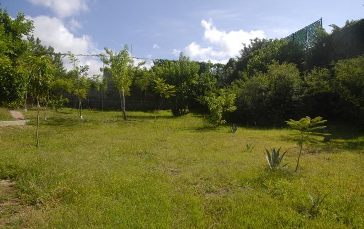 Foto de rancho en venta en  , san felipe del agua 1, oaxaca de juárez, oaxaca, 799219 No. 03
