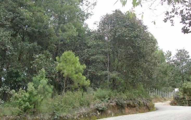 Foto de terreno habitacional en venta en  , san felipe ecatepec, san cristóbal de las casas, chiapas, 1877646 No. 01