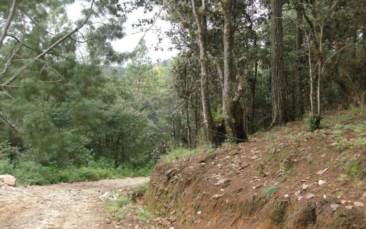 Foto de terreno habitacional en venta en  , san felipe ecatepec, san cristóbal de las casas, chiapas, 374318 No. 03
