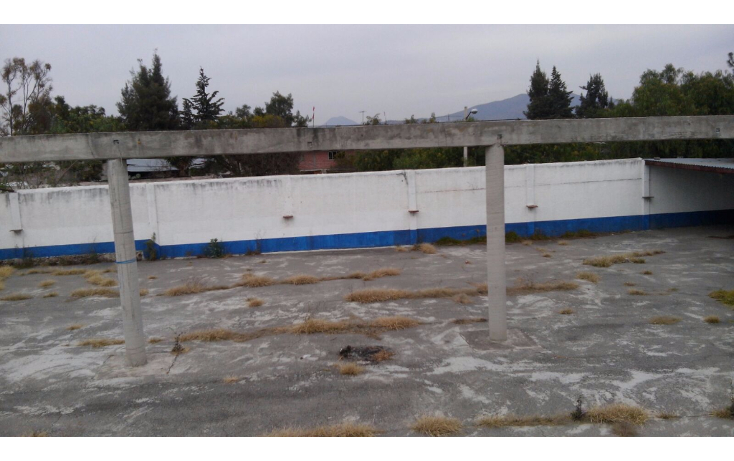 Foto de terreno comercial en venta en  , san felipe teotitl?n centro, nopaltepec, m?xico, 1682136 No. 05