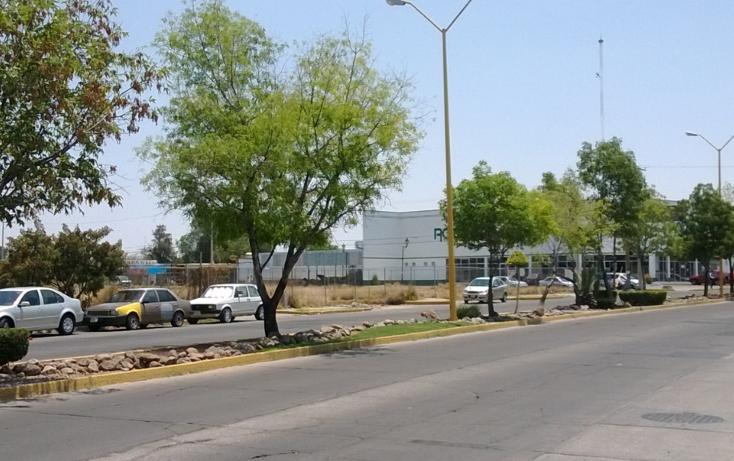 Foto de terreno comercial en renta en  , san fernando infonavit, aguascalientes, aguascalientes, 1068503 No. 05