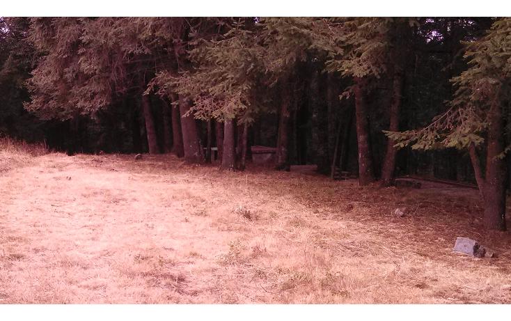 Foto de terreno habitacional en venta en  , san francisco chimalpa, naucalpan de ju?rez, m?xico, 1252745 No. 03