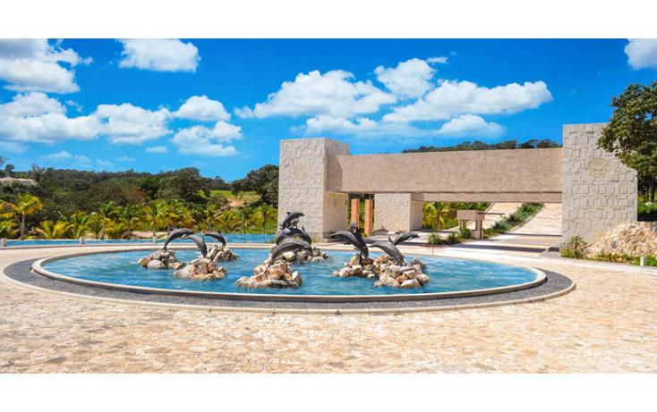 Foto de terreno habitacional en venta en  , san francisco de campeche  centro., campeche, campeche, 1243915 No. 05