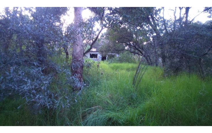 Foto de terreno habitacional en venta en  , san francisco dos ríos, huixquilucan, méxico, 1662170 No. 07