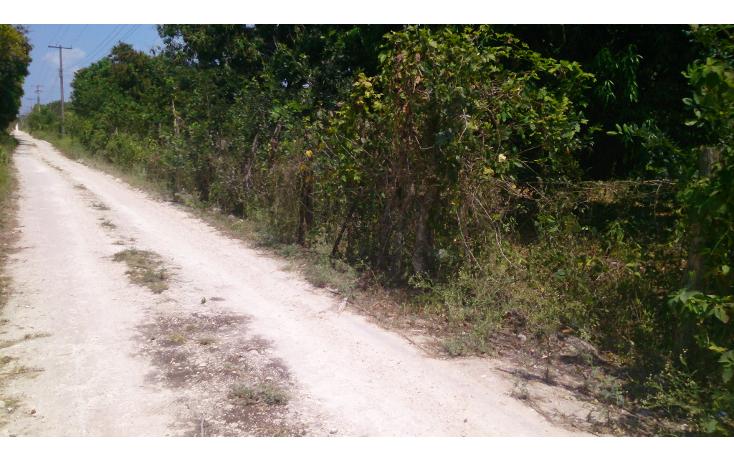 Foto de terreno comercial en venta en  , san francisco koben, campeche, campeche, 1259723 No. 02