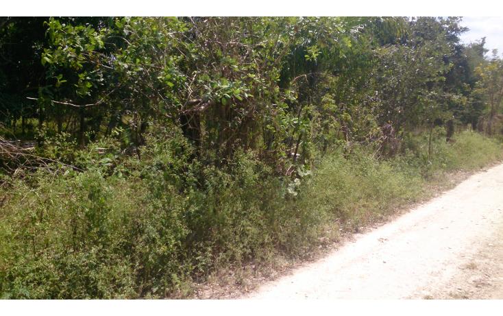 Foto de terreno comercial en venta en  , san francisco koben, campeche, campeche, 1259723 No. 03