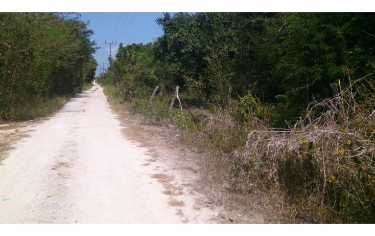 Foto de terreno comercial en venta en  , san francisco koben, campeche, campeche, 1259723 No. 07