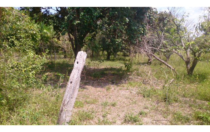 Foto de terreno comercial en venta en  , san francisco koben, campeche, campeche, 1259723 No. 09
