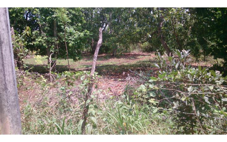 Foto de terreno comercial en venta en  , san francisco koben, campeche, campeche, 1259723 No. 10