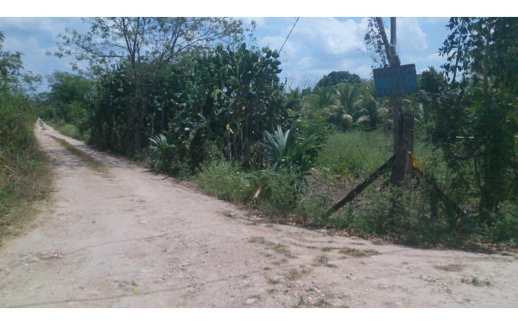 Foto de terreno comercial en venta en  , san francisco koben, campeche, campeche, 1259723 No. 11