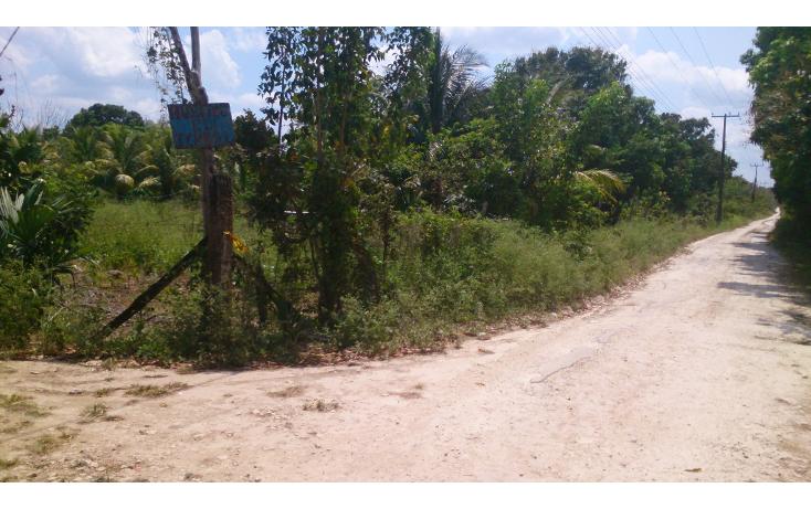 Foto de terreno comercial en venta en  , san francisco koben, campeche, campeche, 1259723 No. 12