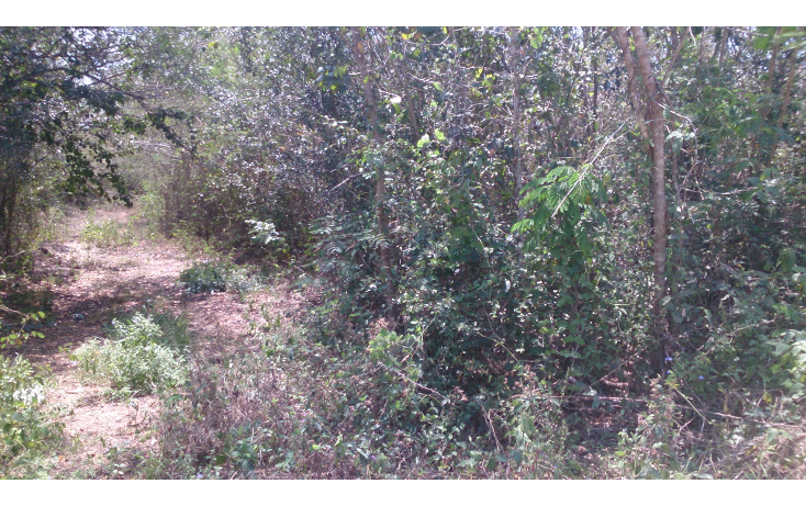 Foto de terreno comercial en venta en  , san francisco koben, campeche, campeche, 1259723 No. 16