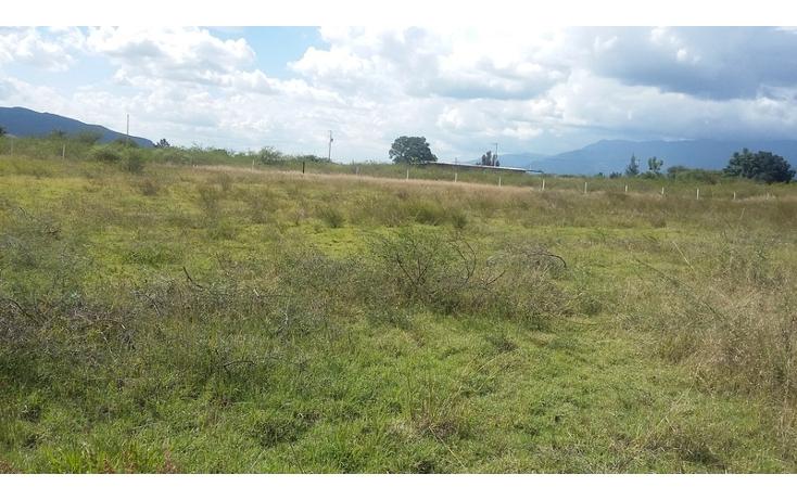 Foto de terreno habitacional en venta en  , san francisco lachigolo, san francisco lachigol?, oaxaca, 1400465 No. 04