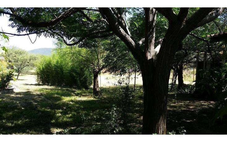 Foto de rancho en venta en  , san francisco lachigolo, san francisco lachigoló, oaxaca, 778415 No. 03