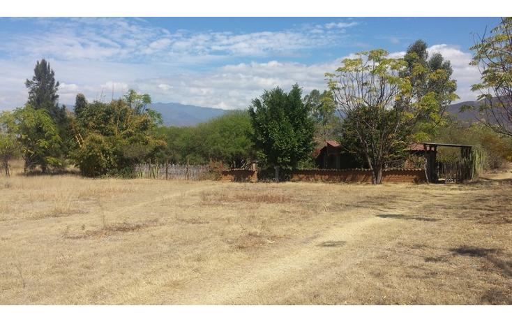 Foto de rancho en venta en  , san francisco lachigolo, san francisco lachigoló, oaxaca, 778415 No. 06