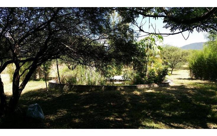Foto de rancho en venta en  , san francisco lachigolo, san francisco lachigoló, oaxaca, 778415 No. 07
